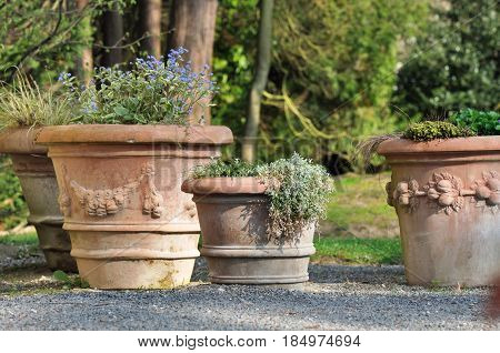three big terracotta pots on terrace in garden