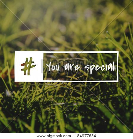 You are special world overlay on grass background