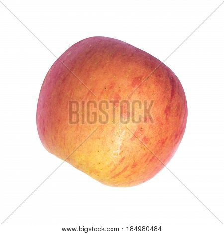 Red and yellow apple isolated on white background. Pink apple Fuji cut in half. Sweet juicy ripe apple fruit. Summer or autumn harvest. Raw apple on white. Healthy snack. Natural diet food. Fruit tree
