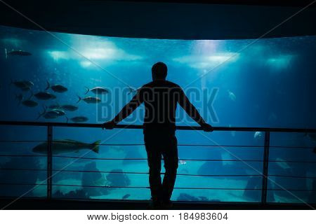 Tourist enjoying peaceful view on the big aquarium in Lisbon,Portugal.Male silhouette visiting biggest aquarium in Europe.Aquatic underwater life observation.Connection with nature concept