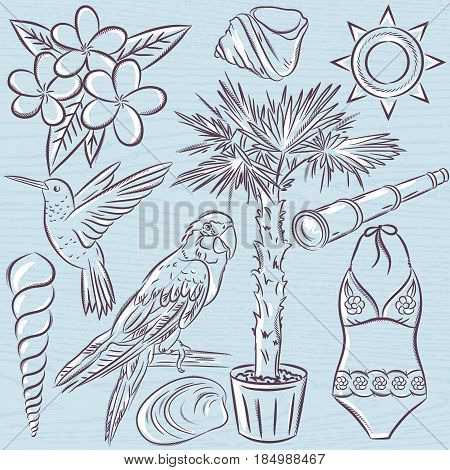 Set of summer symbols swim suit parrot Hummingbird palm tree flowers on a blue grunge background vector illustration