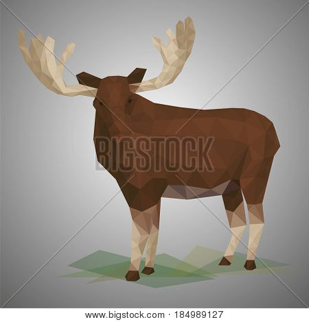 Low poly elk. Vector illustration in polygonal style. Beautiful forest animal on gray background.