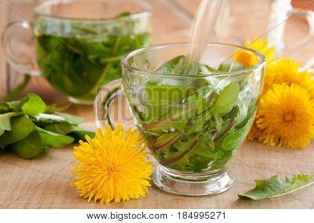 Preparing dandelion tea by pouring hot water over fresh dandelion leaves