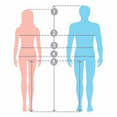 Silhuettes of man and women in full length with measurement lines of body parameters . Man and women sizes measurements. Stock vector cartoon illustration. Human body measurements and proportions. poster