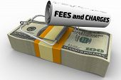 """Dangerous fees and charges. Mousetrap from pack of American dollars with bait in form of sheet with text """"FEES and CHARGES"""". Isolated. 3D Illustration poster"""