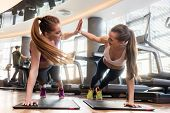 Two young and determined beautiful women giving high five while practicing basic plank exercise on mats during workout in a modern fitness center poster