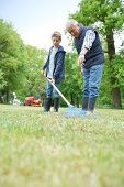 Grandfather with grandkid cleaning garden with rake poster