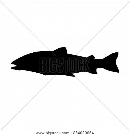 Atlantic Salmon Fish. Black Silhouette. Side View. Vector Illustration Isolated On White Background.