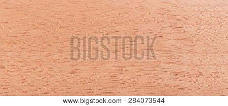 Wood Background - Wood From The Tropical Rainforest - Suriname - Virola Surinamensis