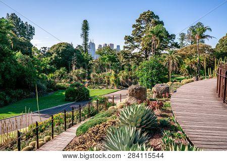 Royal Botanical Gardens Scenic View In Melbourne Victoria Australia