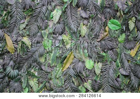 Tropical Green Leaves Background, Fern, Palm And Monstera Deliciosa Leaf On Wall