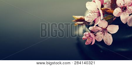 Dark Background With Spa Flowers And Spa Wellness Hot Stones. Spa Wellness Concept. Horizontal.