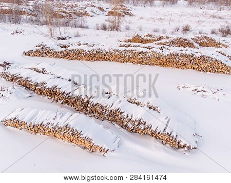 Log Storage Forest, Winter Logging, Sawmill, Top View, Aerial Photo
