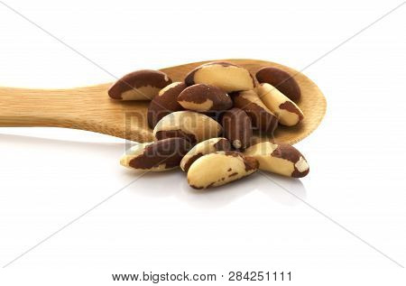 Brazil Nut Wooden Spoon. Isolated On White Background. Place For Text. American Walnut, Bertholletia