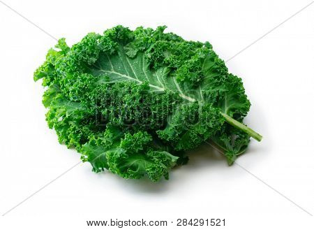Kale. King of nutrition. A Kale leaf isolated on white.
