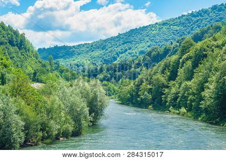 Forest River In Mountains. Forested Hill And Shores. Beautiful Summer Scenery At Sunny High Noon. Fl