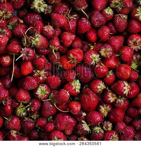 Top view of fresh and mellow red strauberries in a box. Summer berries time, healthy food. poster