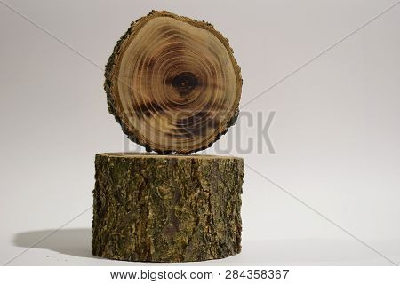 Tree Stump, Isolated On White, Wooden Stump Isolated On The White Background.
