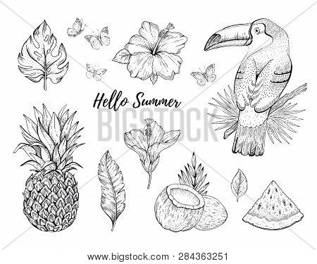 Hello Summer Tropic Set. Fruit, Flower, Food, Animal, Leaf Stickers. Coco, Watermelon, Toucan Bird,