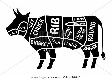 Beef Chart. Poster Butcher Diagram For Groceries, Meat Stores, Butcher Shop. Segmented Cow Silhouett