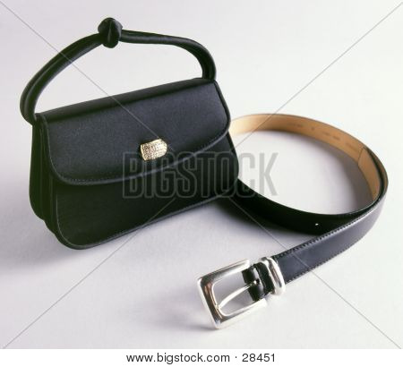Bag And Belt