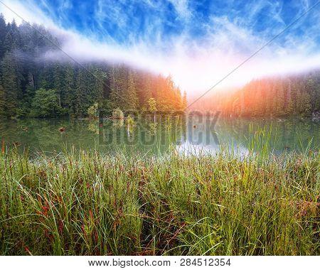 Majestic Summer View Of Mountain Lake Lacul Rosu Or Red Lake Or Killer Lake. Rotten Tree Trunks. Log