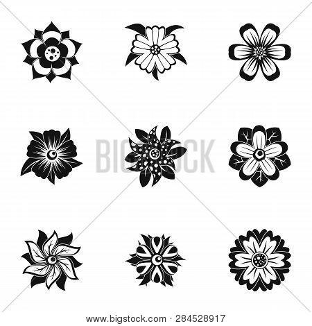 Florist Decoration Icon Set. Simple Set Of 9 Florist Decoration Icons For Web Isolated On White Back
