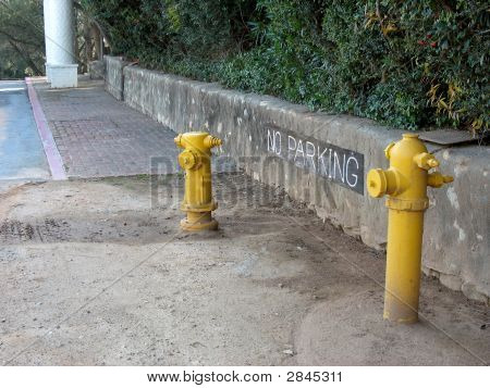 Two Fire Hydrants
