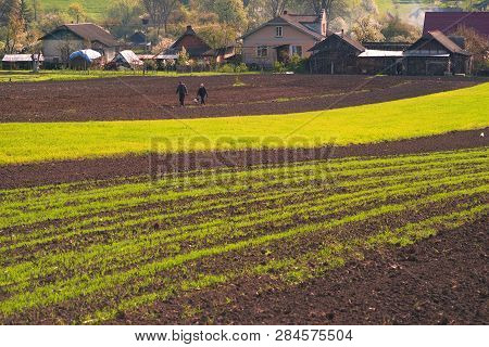 Spring Ukraine Peasants Cultivate The Land Of Artistic Compositions Of Fragments Of Land In  Hills A