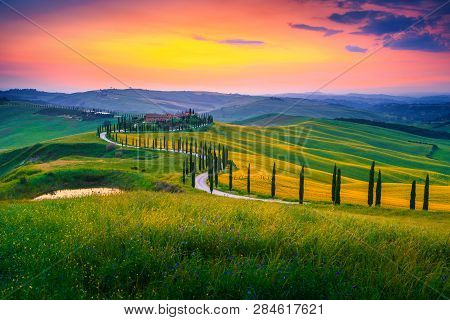 Amazing Summer Colorful Sunset Landscape In Tuscany. Spectacular Flowery Grain Fields And Winding Ro