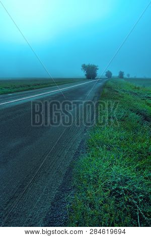 Long Empty Asphalt Country Road With Green Grass Stratching Off To A Lone Tree In Misty Morning Fog.