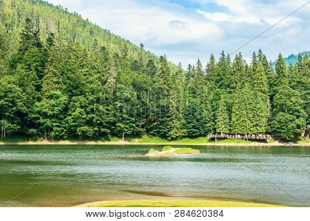 Beautiful Summer Scenery Of The Synevyr Lake. Pier Among The Coniferous Forest On The Shore. Popular