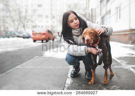 Young Woman In Warm Clothes Sits On The Ground With A Dog And Adjusts The Collar On The Background O