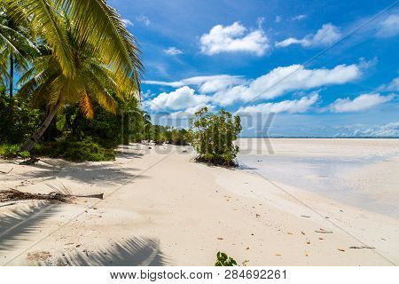 Yellow Beautiful Sandy Paradise Beach Of Azure Turquoise Blue Shallow Lagoon, North Tarawa Atoll, Su