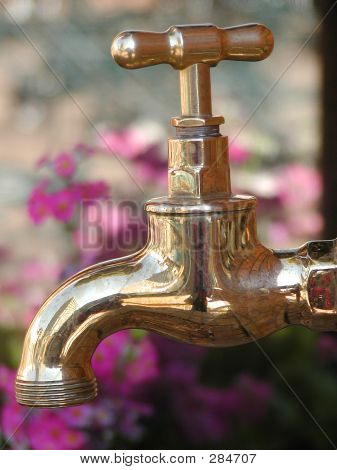 Garden Tap And Flowers