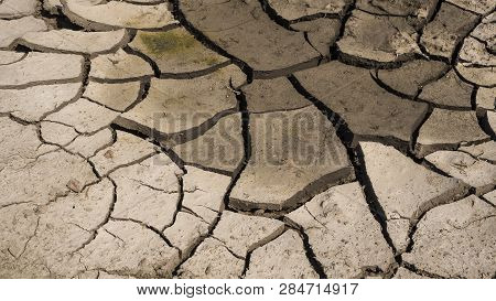 White dried and cracked ground earth background, Close up of dry fissure ground, fracture surface, white cracked texture, for designers poster