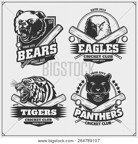 Set Of Cricket Badges, Labels And Design Elements. Sport Club Emblems With Grizzly Bear, Panther, Co