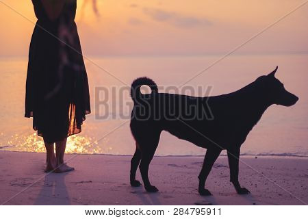 Silhouette Of A Dog And Girl In A Dress Standing Barefoot On The Sand By The Sea During Sunset