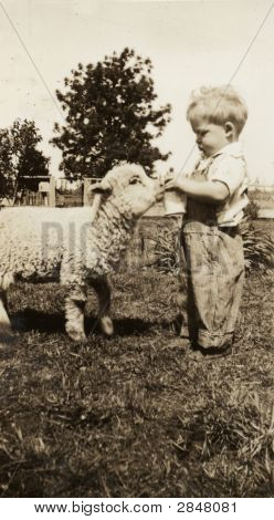 Vintage 1930 Photo On The Farm with Pet Lamb