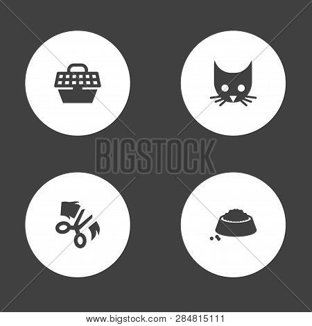 Set Of 4 Animals Icons Set. Collection Of Head, Puppy, Carries And Other Elements.