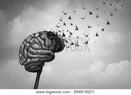 Brain Damage And Cerebral Injury Or Cognitive Function Loss Due To Dimentia As Alzheimer Disease As