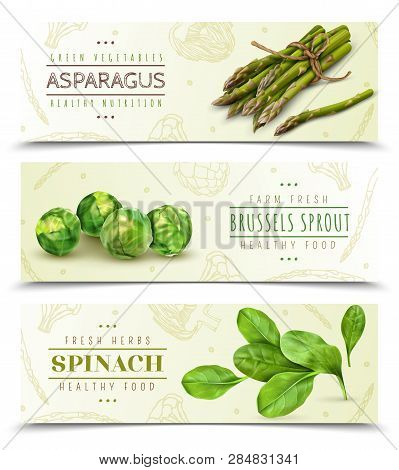 Farm Fresh Green Leafy Vegetables 3 Realistic Horizontal Banners Set With Spinach Asparagus Brussels