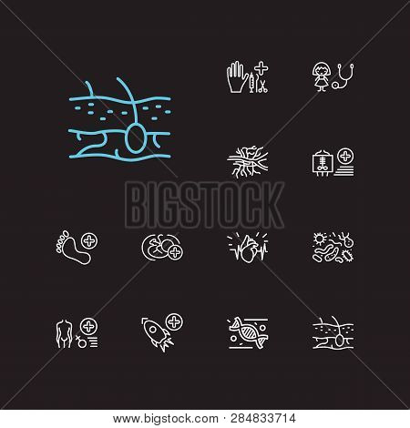 Medical Sciences Icons Set. Bacteriology And Medical Sciences Icons With Angiology, Cardiology And R