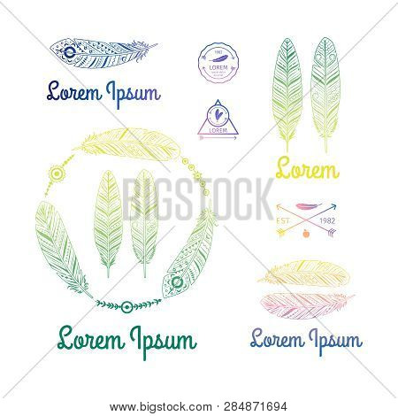 Color Ethnic Feathers Logo Vector Of Set. Illustration Of Feather Ethnic, Tribal Indian Sketch Logo