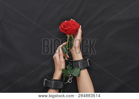Fetish Fantasy. Top View Of Female Hands In Black Leather Handcuffs Holding Red Rose Against Of Blac
