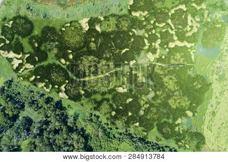 Aerial View Drone Shot Top Down Of Green Forest And Lake Beautiful Wilderness Nature Scenery For Bac