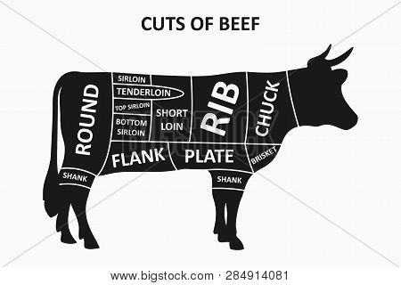 Cuts Of Beef Scheme With Cow. Meat Cuts Poster For Butcher Shop. Vector Illustration.