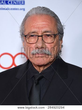 LOS ANGELES - FEB 17:  Edward James Olmos arrives for the Hollywood Beauty Awards 2019 on February 17, 2019 in Hollywood, CA