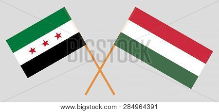 Hungary And Syria Opposition. The Hungarian And Syrian National Coalition Flags. Official Proportion