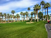 A young man walking towards the green on a par 4 surrounded palm trees in the background on the desert oasis  golf course of Palm Springs, California, United States of America. poster